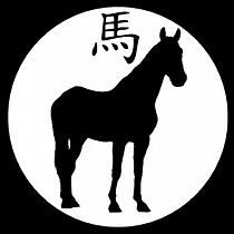 OMBRE CHINOISE CHEVAL.jpg