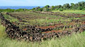 Oahu-PuuoMahukaHeiau-topviewnorth.JPG