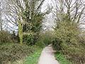 Old Mineral Line walking trail, near Washford (geograph 2337111).jpg