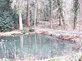 One of the pools - Croft Castle - Feb 2012 - panoramio.jpg