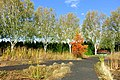 Oregon Garden - Silverton, Oregon - DSC00308.jpg