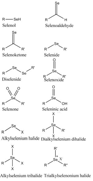 Organoselenium chemistry - Structures of some organoselenium compounds