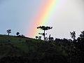 Ouro no fim do arco-iris.jpg