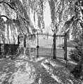 Overzicht toegangshek met gesloten deuren, van binnenuit - Wissenkerke - 20352693 - RCE.jpg