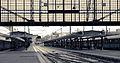P1250365 Paris XIII gare Paris-Austerlitz hall principal quais rwk.jpg