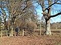Paddocks near Linwood - geograph.org.uk - 99879.jpg