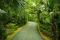 Palmetto-islands-park-walkway-sc1.jpg