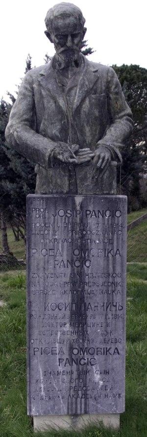 Josif Pančić - Pančić monument Crikvenica, Croatia