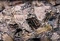 Pappenheim-barlang fadarabkás homokkő.jpg