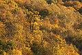 Parcul Mare (4110092494).jpg