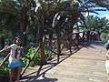 Parque El Agua - Margarita - panoramio (8).jpg