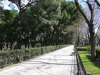 How to get to Paseo Del Pintor Rosales with public transit - About the place