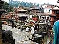 Pashupatinath, Nepal (15376522070).jpg
