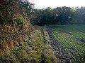 Path across Fulbourn fen - geograph.org.uk - 1039337.jpg