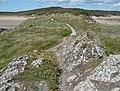 Path on Llanddwyn Island - geograph.org.uk - 848804.jpg