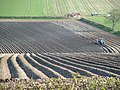 Patterns in the Landscape - potato ridges between Kilham and Rudston - geograph.org.uk - 404936.jpg