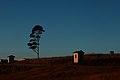 Peddie, South Africa - panoramio (1).jpg