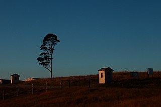 Peddie, Eastern Cape Place in Eastern Cape, South Africa