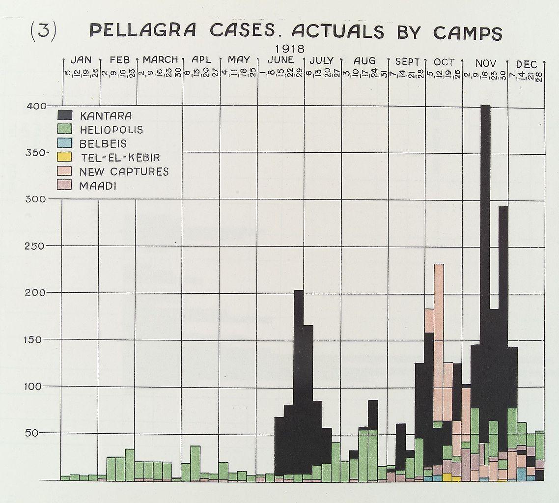 O Ring Chart: Pellagra cases chart Wellcome L0034046.jpg - Wikimedia Commons,Chart