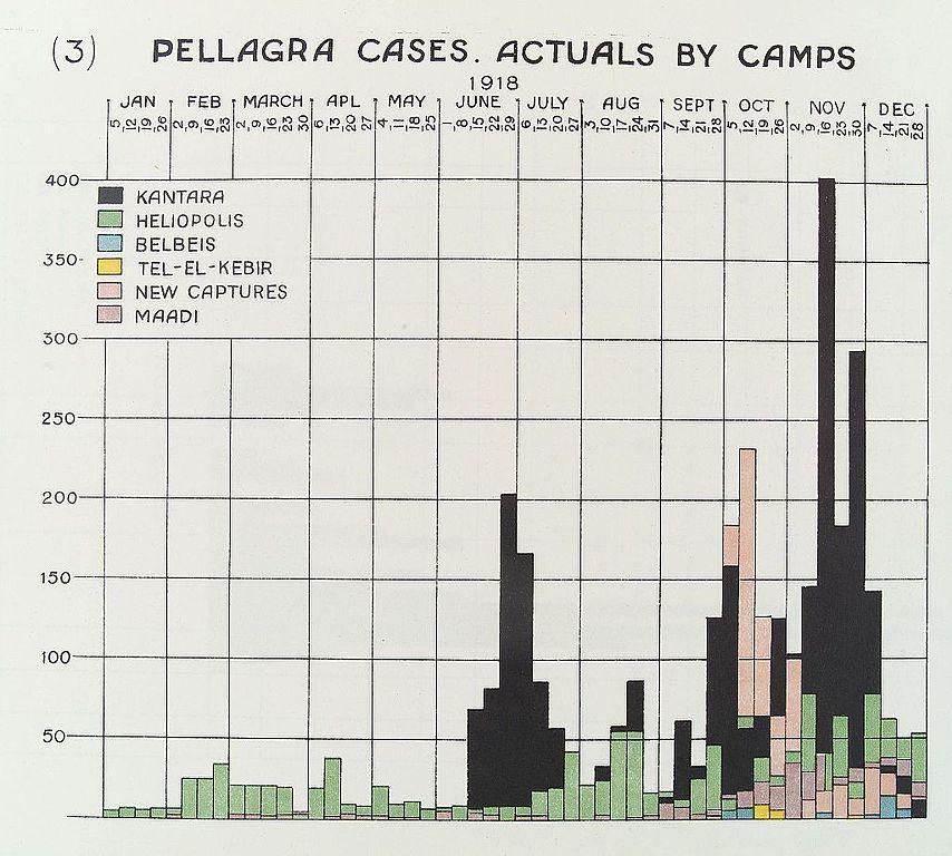 1 100 Chart Worksheet: Pellagra cases chart Wellcome L0034046.jpg - Wikimedia Commons,Chart