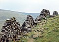 Pennine Way between Keld and Muker - geograph.org.uk - 523283.jpg