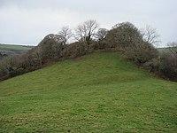 Penstowe Castle near Kilkhampton - geograph.org.uk - 643816.jpg