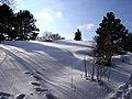 Perchtoldsdorfer Heide, Bild 27.jpg