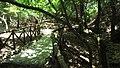 Petaloudes - behind trees - panoramio.jpg