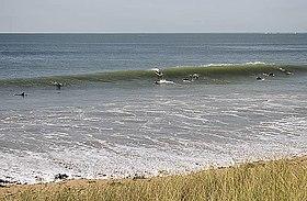Surf île de ré