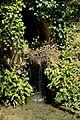 Petite cascade au Clos Lucé.JPG