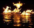 Phoenix fire.jpg