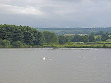 Expanse of water with white birds. Trees and hills in the background