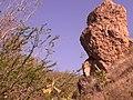 Piedra Sola - panoramio.jpg