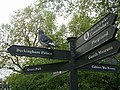 Pigeons point the way - geograph.org.uk - 7410.jpg