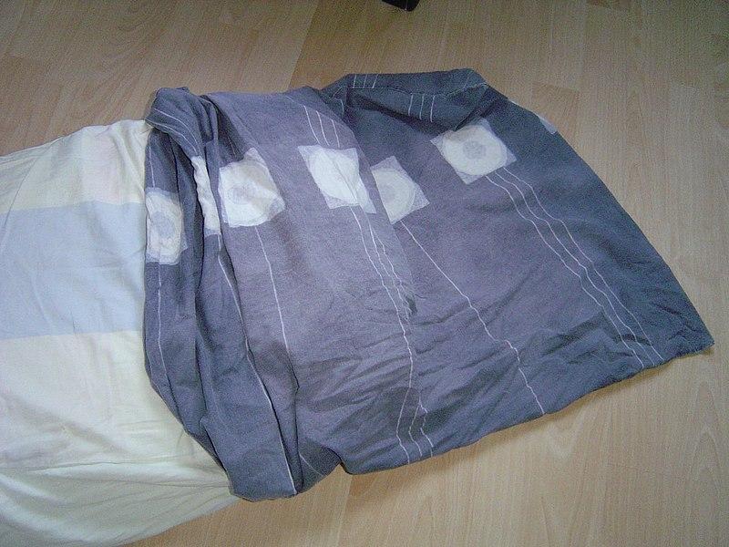 File:Pillow case.JPG