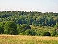 Pirna, Germany - panoramio (501).jpg