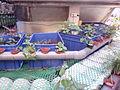Plant Wall Aquaponics IMG 20150805 172920.jpg
