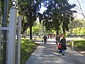 Plaza Manuel Belgrano.jpg