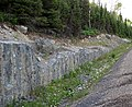 Pleistocene glacial till over Precambrian tillite (Straight Lake West roadcut, north of Temagami, Ontario, Canada) 3 (33938501728).jpg
