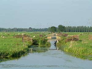 Water board (Netherlands) - Polder landscape at 't Beijersche, southeast of Gouda