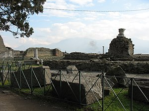Conservation issues of Pompeii and Herculaneum - Fencing in the temple of Venus in Pompeii prevents vandalism of the site, as well as theft - many tourists obtain small artefacts from both cities as souvenirs.