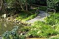 Pond - Tsurugaoka Hachiman-gū - Kamakura, Kanagawa, Japan - DSC08358.JPG