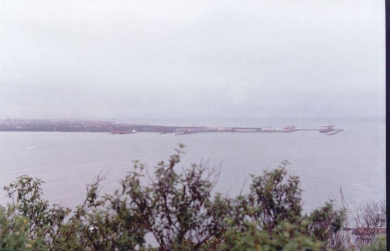 Ficheiro:Porto de tubarao-mdm.JPG