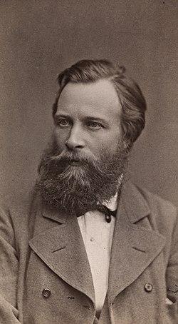 Portrett av Otto Sinding (1842-1909) (cropped).jpg