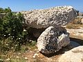 Pre-history in Mosta 15.jpg