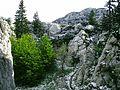 Premuzicova stezka Rozanskymi stenami, cervnovy snehovy popr.jpg