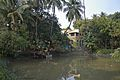 Private House with Pond - Saidpur - Taki - North 24 Parganas 2015-01-13 4764.JPG