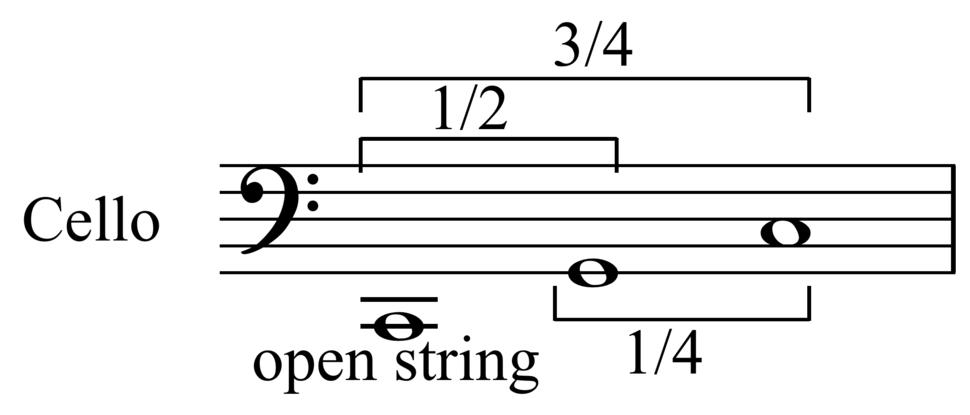 Proportional string fingering