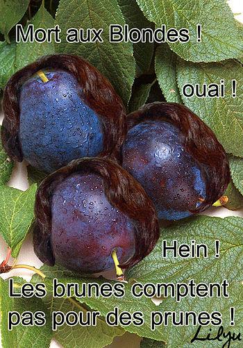 prune brune, dessin humoristique