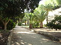 Public Park in Nicosia Walls - Republic of Cyprus.jpg